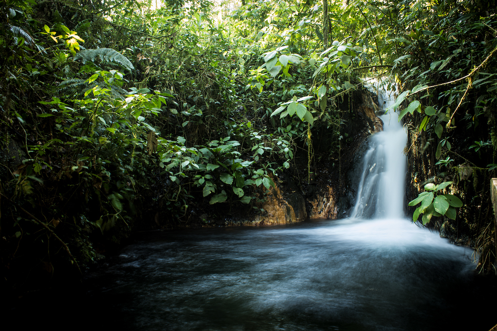 waterfalls-costa-rica-sensoria-playa-grande-national-park